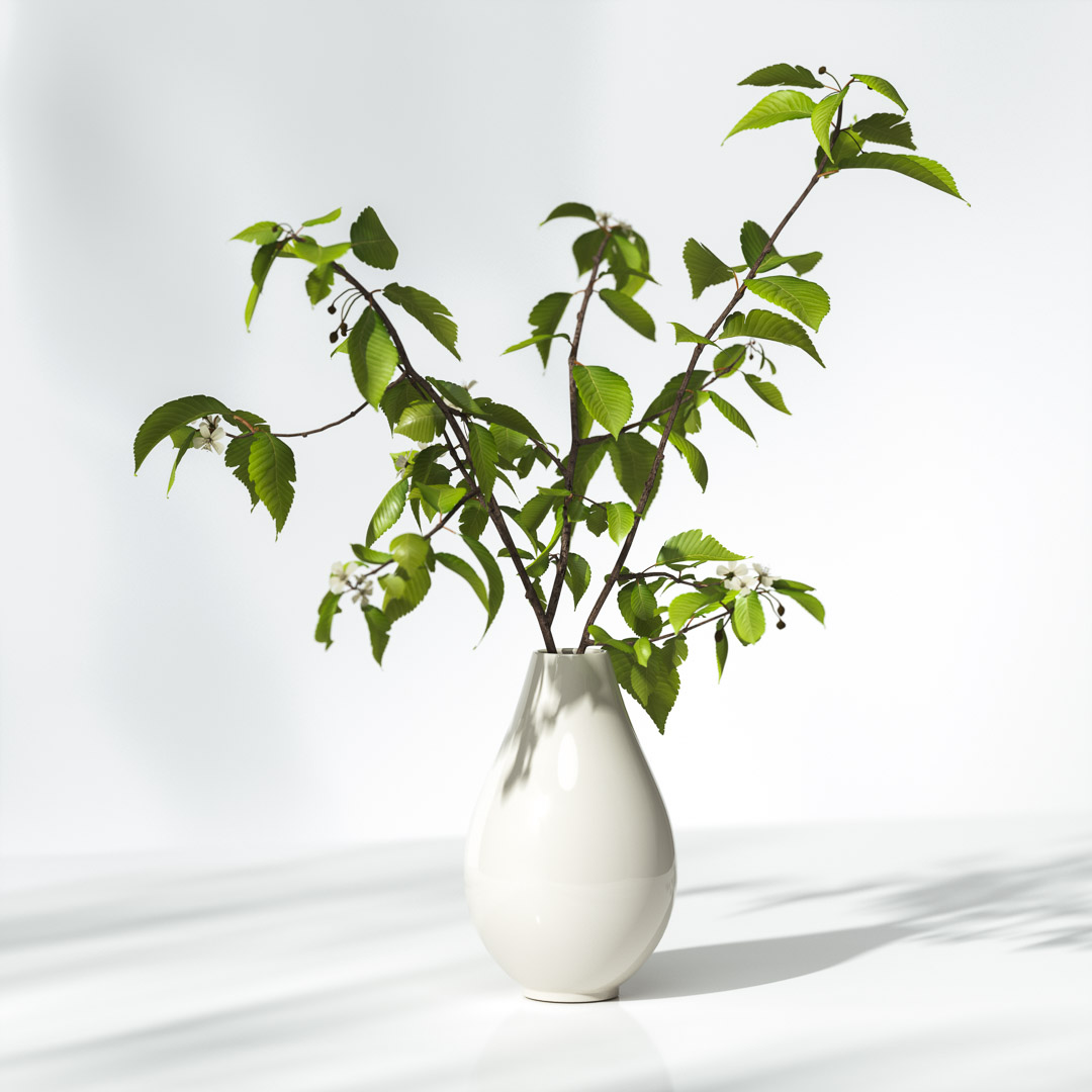 Tree branches in vase