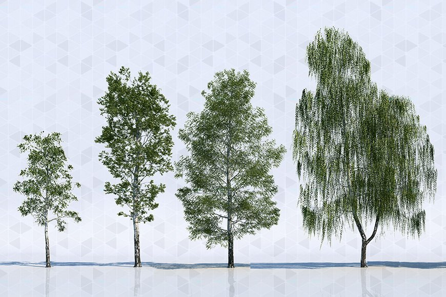 Free 3d models - Trees - Viz-People